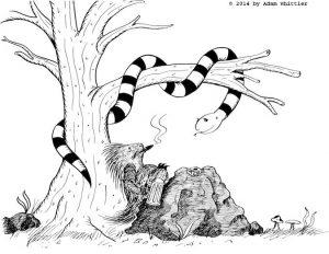 Belinda the snake and Luther the porcupine. Children's book illustration.